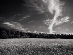 Courtesy of Jukka Vuokko via Flickr Creative Commons